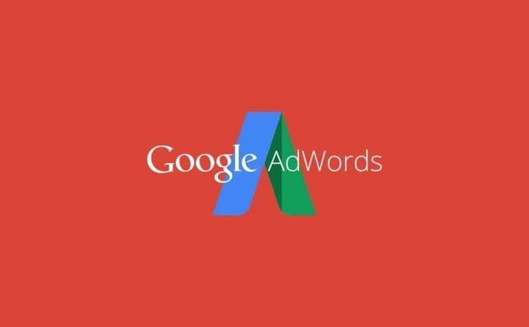 Google Adwords Expert Delhi